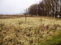 Prodej pozemku v lokalitě Pasohlávky, okres Břeclav - obrázek č. 4
