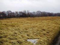 Prodej pozemku v lokalitě Pasohlávky, okres Břeclav - obrázek č. 2