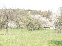 Prodej pozemku v lokalitě Luleč, okres Vyškov - obrázek č. 2