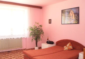 Prodej komerčních prostor v lokalitě Vyškov, okres Vyškov - obrázek č. 1