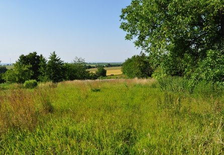 Prodej pozemku v lokalitě Pačlavice, okres Kroměříž - obrázek č. 1