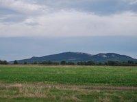 Prodej pozemku v lokalitě Pasohlávky, okres Brno-venkov - obrázek č. 5