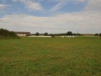 Prodej pozemku v lokalitě Božice, okres Znojmo - obrázek č. 2