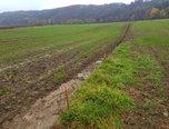 Račice-Pístovice, zemědělská půda 5 837m2 - orná půda - Pozemky Vyškov