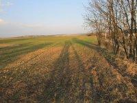 Prodej pozemku v lokalitě Lukovany, okres Brno-venkov - obrázek č. 2