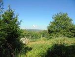 Blansko - Písečná, zahrada 475 m2 - pozemek - Pozemky Blansko
