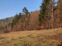 Prodej pozemku v lokalitě Dolní Loučky, okres Brno-venkov - obrázek č. 6