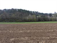 Prodej pozemku v lokalitě Drásov, okres Brno-venkov - obrázek č. 5