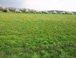 Valtice, prodej stavební parcely-komerce, 12214m² - pozemek - Pozemky Břeclav