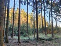 Prodej pozemku v lokalitě Suchý, okres Blansko - obrázek č. 5