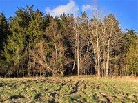 Prodej pozemku v lokalitě Suchý, okres Blansko - obrázek č. 6