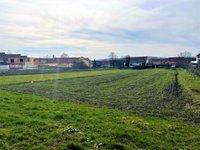 Prodej pozemku v lokalitě Terezín, okres Hodonín - obrázek č. 6