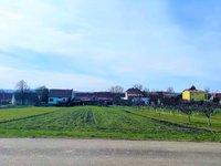 Prodej pozemku v lokalitě Terezín, okres Hodonín - obrázek č. 4