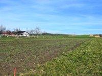 Prodej pozemku v lokalitě Terezín, okres Hodonín - obrázek č. 2