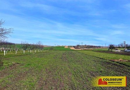Prodej pozemku v lokalitě Terezín, okres Hodonín - obrázek č. 1