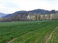 Prodej pozemku v lokalitě Borač, okres Brno-venkov - obrázek č. 6