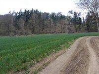 Prodej pozemku v lokalitě Borač, okres Brno-venkov - obrázek č. 3