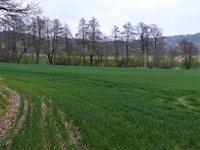 Prodej pozemku v lokalitě Borač, okres Brno-venkov - obrázek č. 7