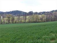 Prodej pozemku v lokalitě Borač, okres Brno-venkov - obrázek č. 8