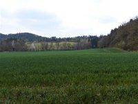Prodej pozemku v lokalitě Borač, okres Brno-venkov - obrázek č. 5