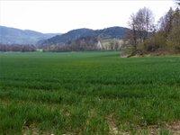 Prodej pozemku v lokalitě Borač, okres Brno-venkov - obrázek č. 2