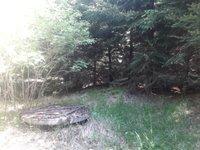 Prodej pozemku v lokalitě Velenov, okres Blansko - obrázek č. 3