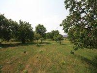 Prodej pozemku v lokalitě Újezd u Brna, okres Brno-venkov - obrázek č. 2