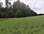 Vítějeves, orná půda, 2.618 m2, krásná příroda – pozemek - Pozemky Svitavy