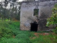 Prodej pozemku v lokalitě Dolní Rožínka, okres Žďár nad Sázavou - obrázek č. 6