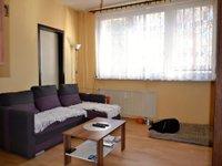 Prodej bytu v lokalitě Ostrava, okres Ostrava - obrázek č. 5
