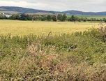 Jaroměřice u Jevíčka - zemědělská půda  22.632 m² - pozemek - Pozemky Svitavy