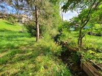 Prodej pozemku v lokalitě Česká Třebová, okres Ústí nad Orlicí - obrázek č. 4