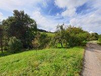 Prodej pozemku v lokalitě Česká Třebová, okres Ústí nad Orlicí - obrázek č. 3