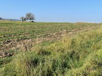 Prodej pozemku v lokalitě Rataje, okres Kroměříž - obrázek č. 5
