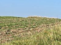 Prodej pozemku v lokalitě Rataje, okres Kroměříž - obrázek č. 7