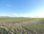 Veverská Bítýška, zemědělská půda 49.747 m2 - soubor pozemků - Pozemky Brno-venkov