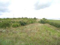 Prodej pozemku v lokalitě Čučice, okres Brno-venkov - obrázek č. 3