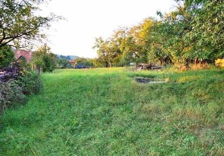 Prodej pozemku v lokalitě Bílovice nad Svitavou, okres Brno-venkov - obrázek č. 1