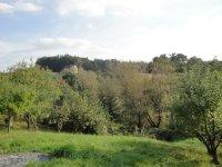 Prodej pozemku v lokalitě Blansko, okres Blansko - obrázek č. 9
