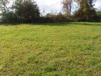 Prodej pozemku v lokalitě Lhotka, okres Žďár nad Sázavou - obrázek č. 3