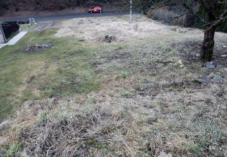 Prodej pozemku v lokalitě Olomučany, okres Blansko - obrázek č. 1