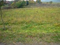 Prodej pozemku v lokalitě Němčice, okres Blansko - obrázek č. 3