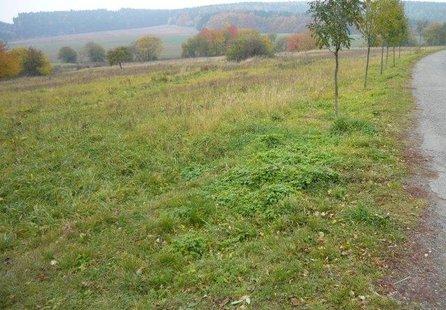 Prodej pozemku v lokalitě Němčice, okres Blansko - obrázek č. 1