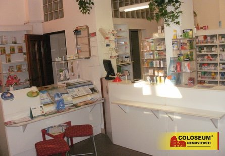 Prodej komerčních prostor v lokalitě Boskovice, okres Blansko - obrázek č. 1