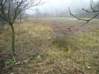 Prodej pozemku v lokalitě Bukovinka, okres Blansko - obrázek č. 6