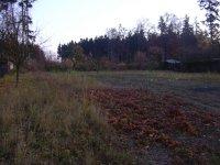 Prodej pozemku v lokalitě Bukovinka, okres Blansko - obrázek č. 4