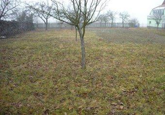 Prodej pozemku v lokalitě Bukovinka, okres Blansko - obrázek č. 1