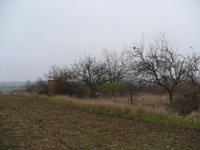 Prodej pozemku v lokalitě Ivaň, okres Brno-venkov - obrázek č. 3