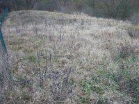 Prodej pozemku v lokalitě Šebrov-Kateřina, okres Blansko - obrázek č. 4