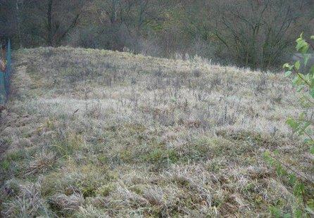 Prodej pozemku v lokalitě Šebrov-Kateřina, okres Blansko - obrázek č. 1